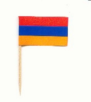 Armenian Flag Toothpicks